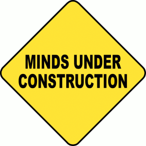 minds-under-construction