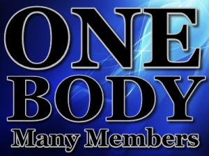 one-body-many-members